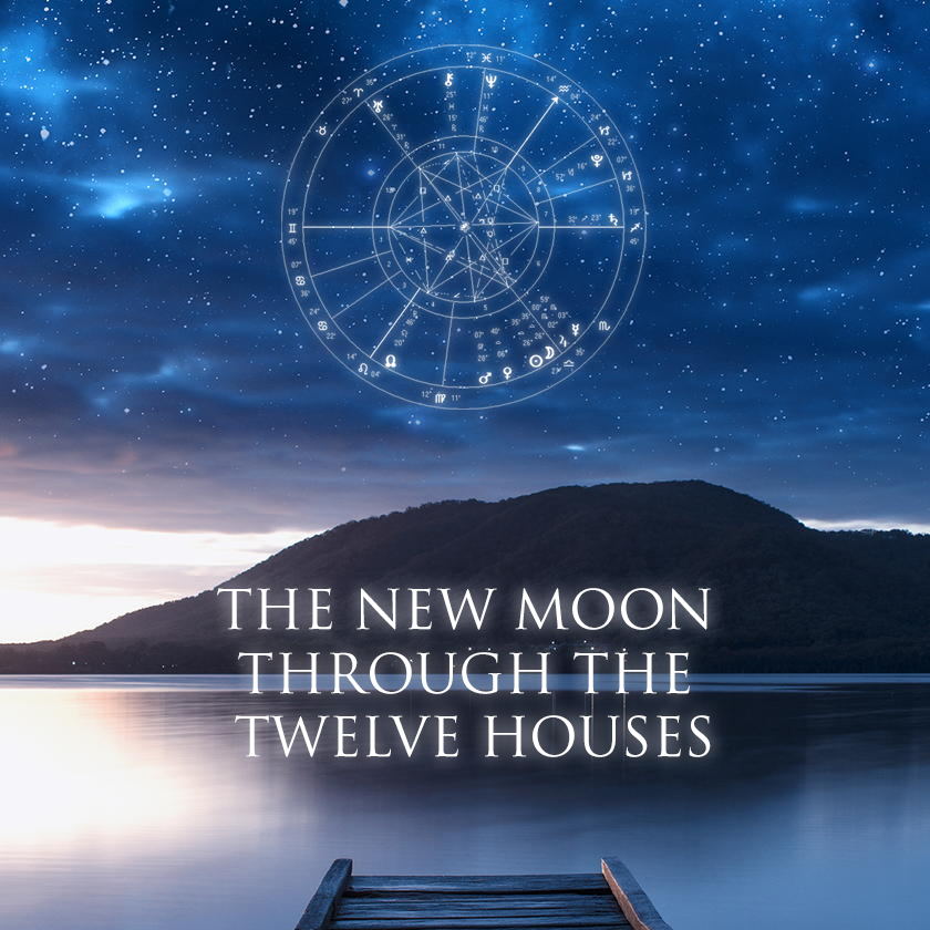 New Moon Through The Houses